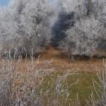 Téli szépek-hangulatképek a tájról