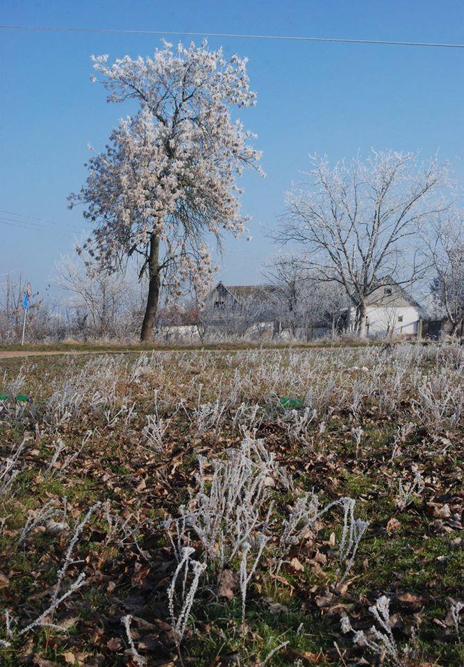 Doroszló-Gellér Ági képe