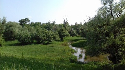 Gombos-Tuskós-az érintetlen természet