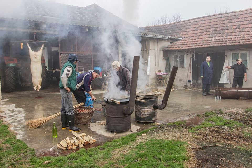 Disznótor-Doroszló-Petar Desić felvételei