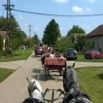 Szent István-napi faluünnep-Bácsgyulafalva